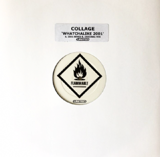 "Collage ‎- Whatchalike 2001 (12"") (Promo) (VG/NM)"